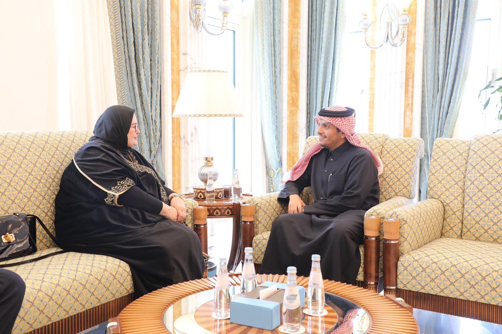 نائب رئيس مجلس الوزراء وزير الخارجية يجتمع مع سفيرة البوسنة والهرسك