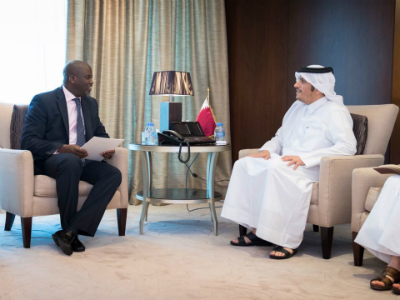 HH the Amir Receives Message from Gambian President