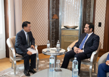 Deputy Prime Minister and Minister of Foreign Affairs Meets Director General of UNIDO