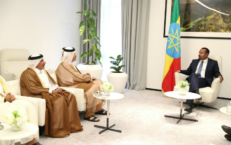 Deputy Prime Minister and Minister of Foreign Affairs Meets Ethiopian Prime Minister