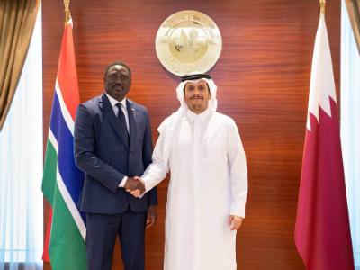نائب رئيس مجلس الوزراء وزير الخارجية يجتمع مع وزير الخارجية والتعاون الدولي بجمهورية غامبيا