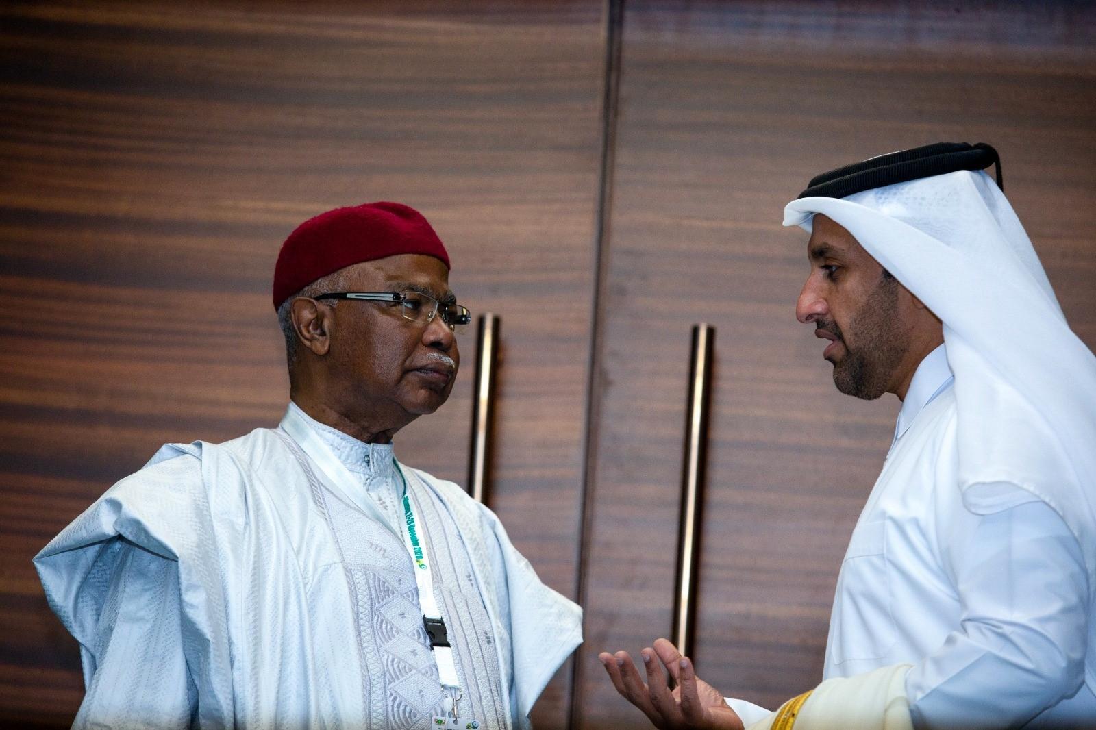 مدير إدارة المنظمات الدولية بوزارة الخارجية يجتمع مع مسؤولين على هامش اجتماع وزراء خارجية منظمة التعاون الإسلامي