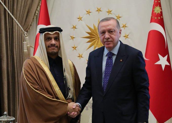 الرئيس التركي يستقبل نائب رئيس مجلس الوزراء وزير الخارجية