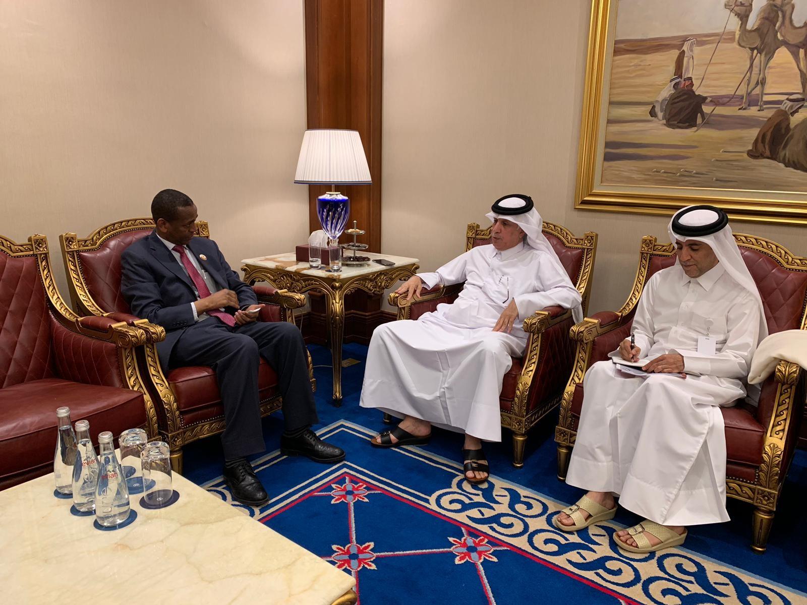 وزير الدولة للشؤون الخارجية يجتمع مع المبعوث الخاص للهيئة الحكومية الدولية المعنية بالتنمية