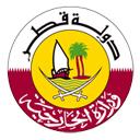 دولة قطر تؤكد أنها تولي اهتماماً خاصاً بالرياضة على المستوى الوطني والإقليمي والدولي