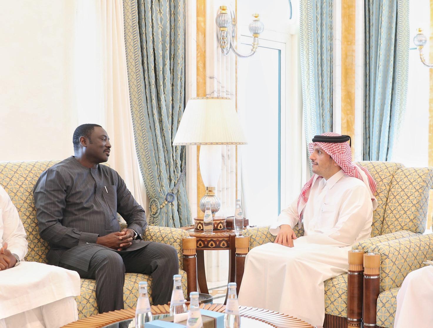 نائب رئيس مجلس الوزراء وزير الخارجية يجتمع مع وزير خارجية غامبيا