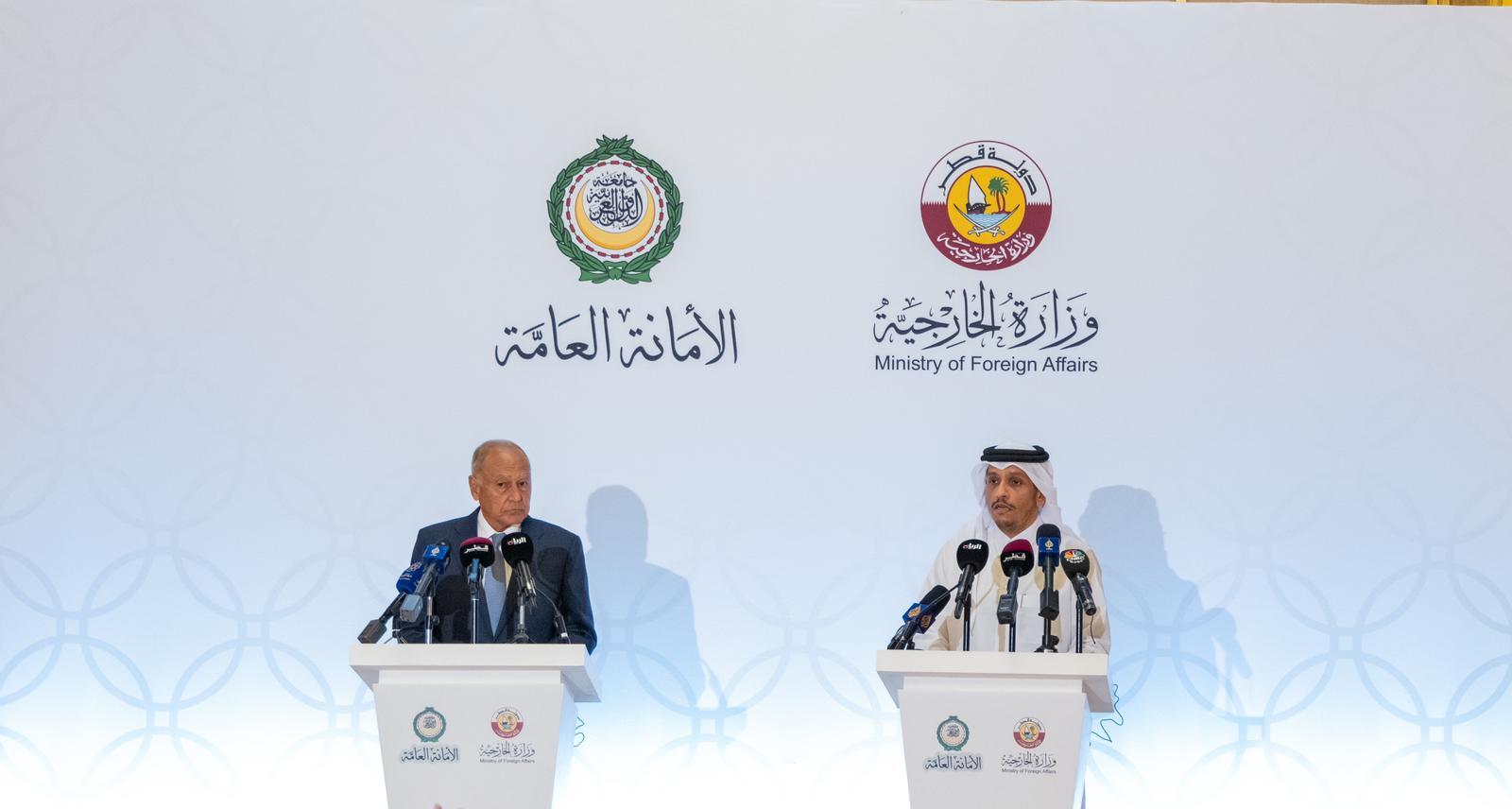 نائب رئيس مجلس الوزراء وزير الخارجية: هناك موقف عربي موحد حيال أزمة سد النهضة