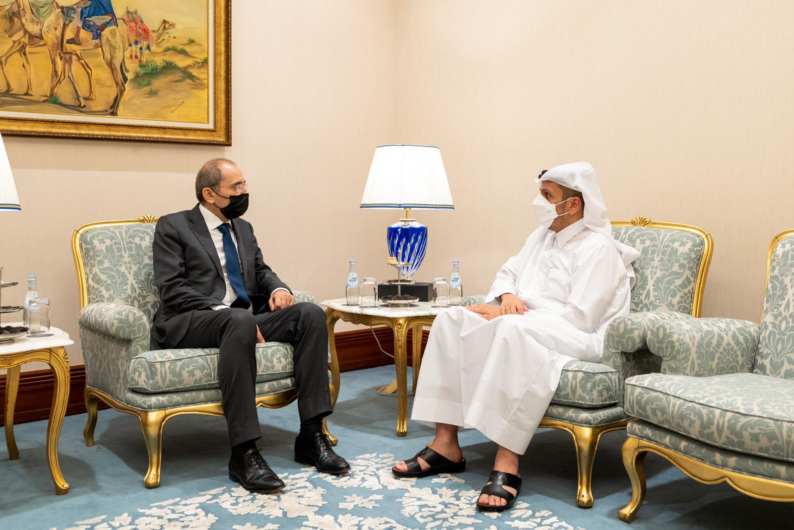 نائب رئيس مجلس الوزراء وزير الخارجية يجتمع مع عدد من وزراء الخارجية العرب
