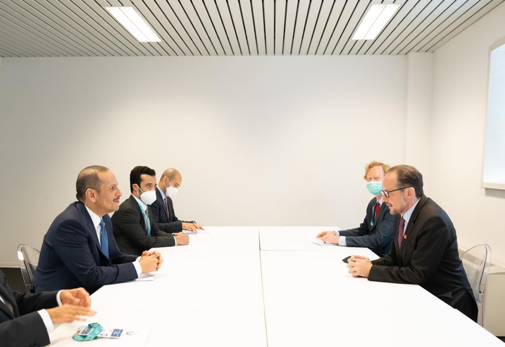 نائب رئيس مجلس الوزراء وزير الخارجية يجتمع مع الوزير الاتحادي النمساوي للشؤون الخارجية والأوروبية والاندماج