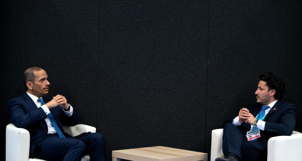 نائب رئيس مجلس الوزراء وزير الخارجية يجتمع مع نائب رئيس الوزراء وزير خارجية مونتينيغرو