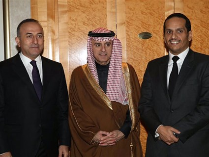 HE Foreign Minister Meets Saudi, Turkish Counterparts